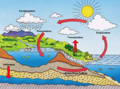 Water | Definition, Source, Form, Cycle, Type & Conservation
