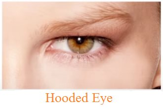 Human Eye || Definition, Working, Parts, Shapes & Defects